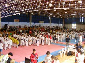 hinode_karate_2013_batta_006
