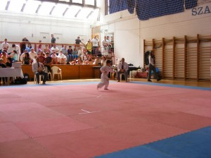 hinode_karate_2013_batta_011