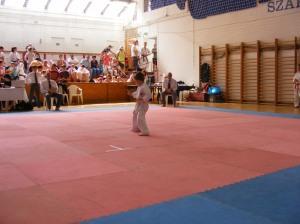 hinode_karate_2013_batta_013