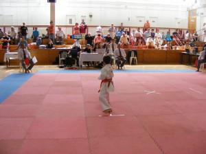 hinode_karate_2013_batta_019