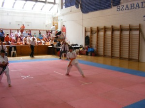 hinode_karate_2013_batta_024