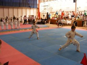 hinode_karate_2013_batta_026