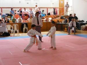 hinode_karate_2013_batta_030