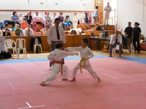 hinode_karate_2013_batta_031