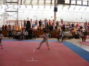 hinode_karate_2013_batta_034