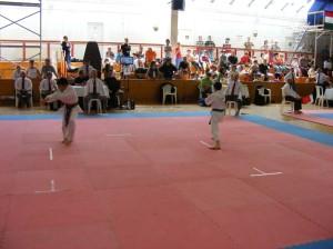 hinode_karate_2013_batta_037