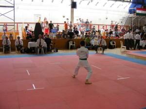 hinode_karate_2013_batta_039