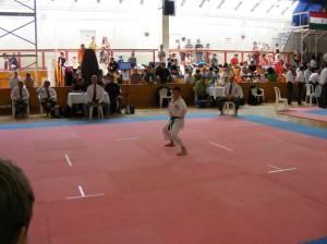 hinode_karate_2013_batta_040