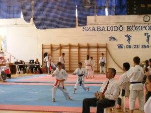 hinode_karate_2013_batta_042
