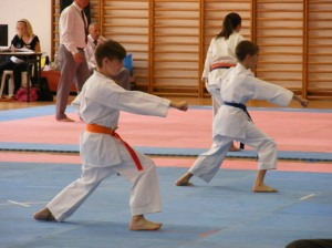 hinode_karate_2013_batta_045