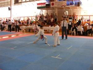 hinode_karate_2013_batta_048