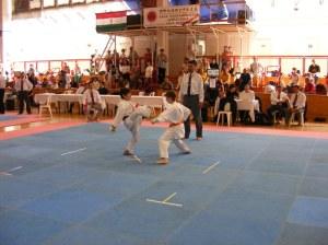 hinode_karate_2013_batta_049