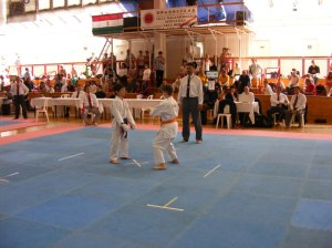 hinode_karate_2013_batta_050