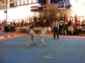 hinode_karate_2013_batta_051