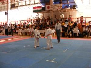 hinode_karate_2013_batta_052