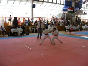 hinode_karate_2013_batta_055