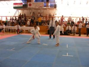 hinode_karate_2013_batta_059