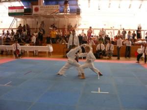 hinode_karate_2013_batta_060