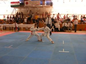 hinode_karate_2013_batta_062