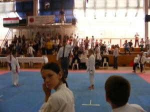 hinode_karate_2013_batta_063