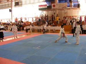 hinode_karate_2013_batta_065