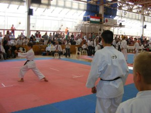 hinode_karate_2013_batta_083