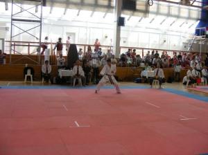 hinode_karate_2013_batta_085