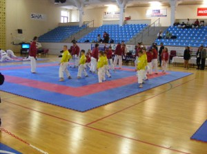hinode_karate_Danók_01