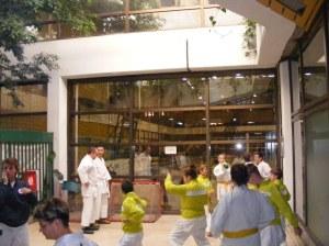 Hinode_karate_skdun_2013_024