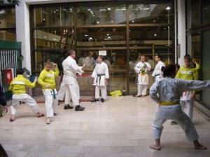 Hinode_karate_skdun_2013_025