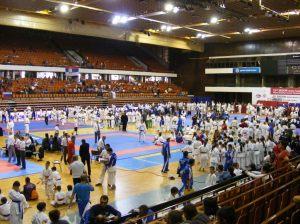 Hinode_karate_skdun_2013_029