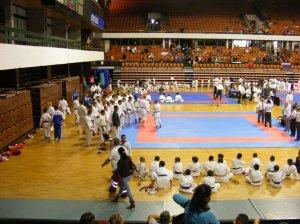Hinode_karate_skdun_2013_030