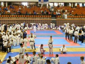 Hinode_karate_skdun_2013_031