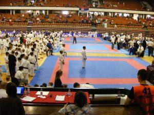 Hinode_karate_skdun_2013_033