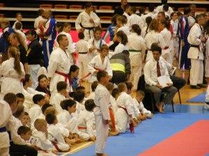 Hinode_karate_skdun_2013_036