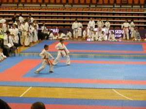 Hinode_karate_skdun_2013_037