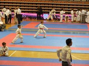 Hinode_karate_skdun_2013_040