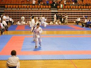 Hinode_karate_skdun_2013_042