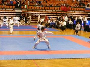 Hinode_karate_skdun_2013_043