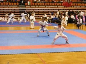 Hinode_karate_skdun_2013_044