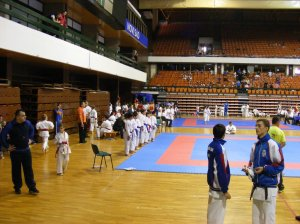 Hinode_karate_skdun_2013_048