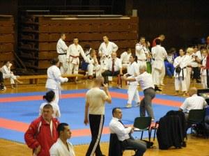 Hinode_karate_skdun_2013_060