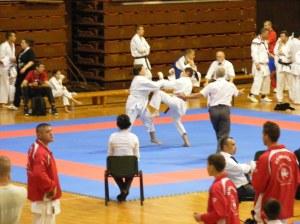 Hinode_karate_skdun_2013_062