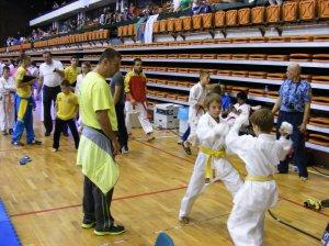 Hinode_karate_skdun_2013_066