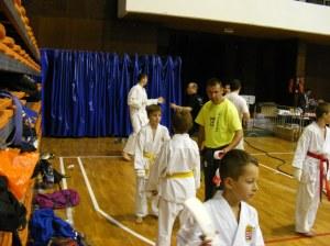 Hinode_karate_skdun_2013_067
