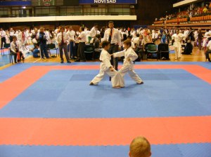 Hinode_karate_skdun_2013_070