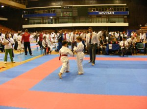 Hinode_karate_skdun_2013_071