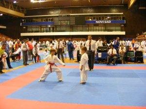 Hinode_karate_skdun_2013_072