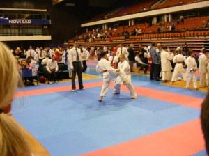 Hinode_karate_skdun_2013_074