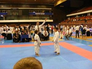 Hinode_karate_skdun_2013_077
